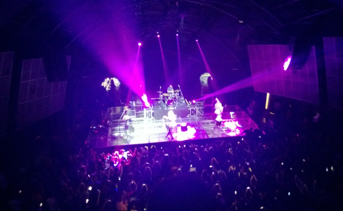 Crazy Echosmith Concert!